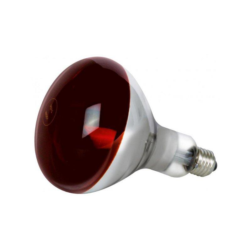 Náhradní žárovka pro lampu B-200-1