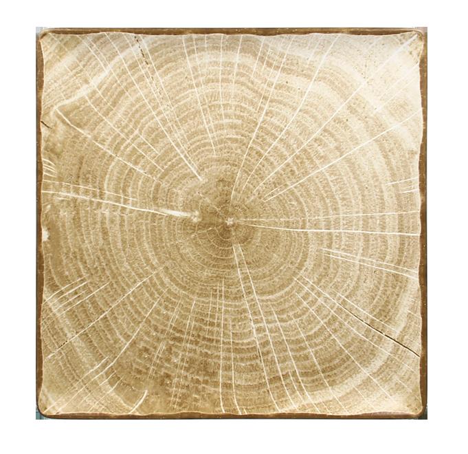 Talíř čtvercový 30 x 30 cm - mechově zelená